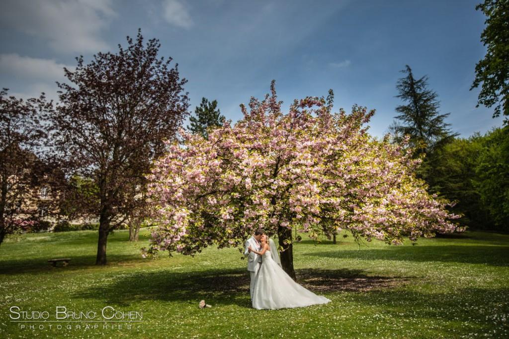 couple de mariés sous le cerisier rose, parc du Chateau de la Tour