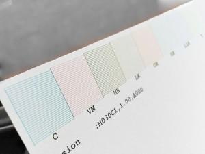 feuille imprimée d'un motif de test de buses Epson 4900