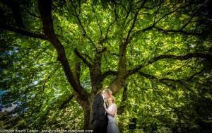 mariage-chateau-de-la-tour-gouvieux-chantilly-maries-couple-baiser-parc-arbre