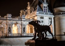 reportage-evenementiel-soiree-chateau-de-chantilly-diner-oise