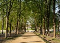 domaine-de-chantilly-oise