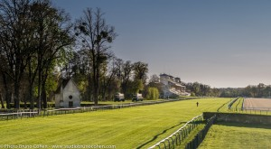 hyppodrome-de-chantilly-chevaux