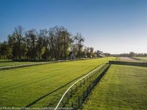 hyppodrome-de-chantilly-chevaux