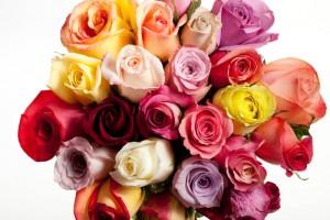 photographie-publicitaire-fleurs-decoration-studio-shooting-art